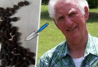 Американский фермер показал, что выросло из загадочных семян из Китая. Спойлер: Хеллоуин у него начался летом