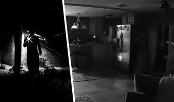 Люди посмотрели видео из пустого дома и потеряли сон. Только на первый взгляд кажется, что в ролике собака