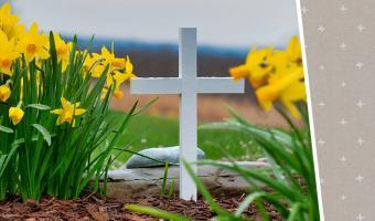 Американцы придумали, чем заняться на кладбище. Но россияне не удивились – их традиции намного мрачнее
