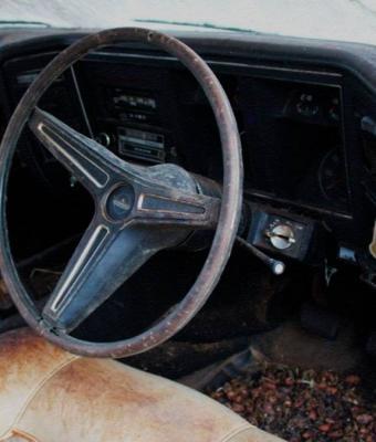 Машина дедули сгнила в сарае, а внуки рады. Безумный незнакомец купил авто за 16 млн, и похоже, его зовут Макс
