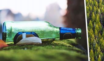 Парень нашёл пивную бутылку, но не выбросил, когда увидел, что внутри. Он хочет в ней жить, и люди понимают