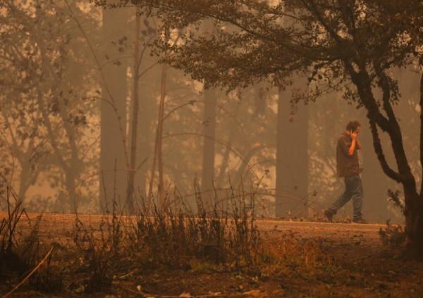 Муж искал жену после пожара в Калифорнии и обратился к незнакомке. Её ответ разбил ему сердце (и открыл глаза)