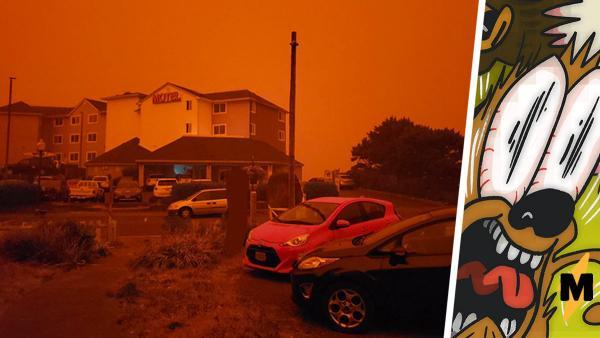 Оранжевое небо над Сан-Франциско стало мемом.