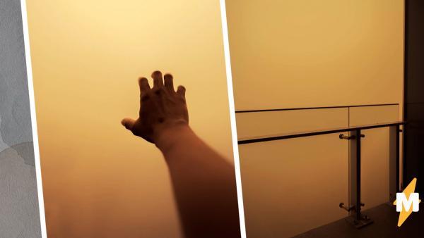 Дым от лесных пожаров превратил города в декорации к хоррорам. В твиттере соревнуются - чей город мрачнее