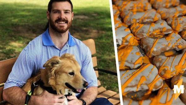 Ветеринар показал вкусняшки, которые вредны для собак. И люди удивились – кормить пушистых больше не чем