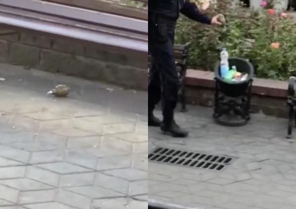 Люди увидели, как белорусская милиция обезвреживает гранату. Спойлер: очень брутально, но разгадка уже найдена