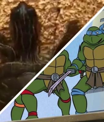 Черепашки-ниндзя существуют, и вот видеодоказательство. Когда нужно сбежать от людей, они ломают гравитацию