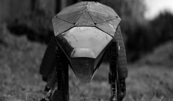 Девушка вышла погулять и увидела пса, наводящего жуть. Это не робот из «Чёрного зеркала», но очень близко