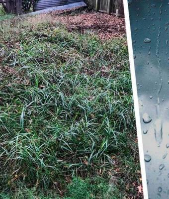 Дождь затопил двор мужчины, а он и счастлив. Ещё бы — вода показала, какой секрет скрывался в огороде