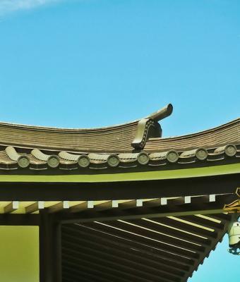Люди увидели дом в Японии, и он их сломал. А вместе с ними гравитацию, ведь почему здание не падает — загадка