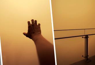 Парень выглянул в окно и попал в фильм «Мгла». А вместе с ним — миллионы людей, и их фото вышли страшнее кино
