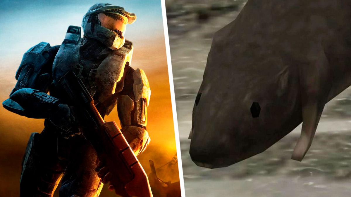 Крыса из Halo 3 — мем, которого мы достойны. Грызун из шутера ворвался в упоротые тренды и стал в нём королём