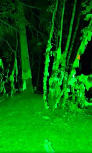 """Трансляция из ночного леса получилось страшнее, чем """"Ведьма из Блэр"""". Зрители вовремя предупредили блогеров"""