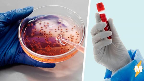 Биолог извлёк чистую молекулу ДНК и показал людям. Все в восторге, ведь повторить такое чудо сможет каждый
