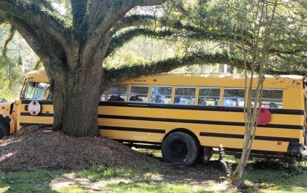 Школьник угнал автобус и показал GTA на минималках. Но этот СиДжей так юн, что людям остаётся его троллить