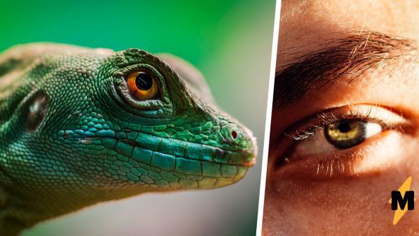 Парень родился рептилией и рассказал, как видит мир. Осторожно, в его глаза страшно смотреть (вернее, в левый)