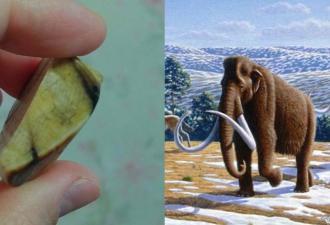 Девушка сделала украшение из бивня мамонта. И запах древней кости она теперь точно не забудет