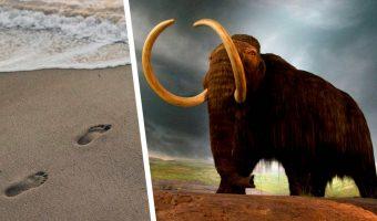 Сид и Мэнни из «Ледникового периода» существовали в реальности. Доказательство — следы, которым 13 тысяч лет