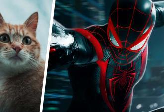 Спаситель 2020-го найден – это кот Человек-паук. Он герой грядущей Spider-Man: Miles Morales и уже бьёт сердца