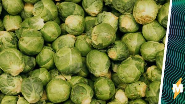 Реддитор опубликовал фото жареной брюссельской капусты. Но этот снимок разбудил в людях кровожадную фантазию