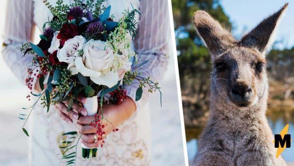 Девушка показала фото со свадьбы мамы, и это сюжет о диснеевской принцессе, где вместо феи-крёстной - малыш Ру
