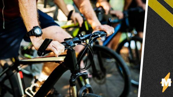 Люди устроили велозабег, но их обогнал неожиданный гонщик. И ему не нужен был велик, чтобы показать, кто лидер