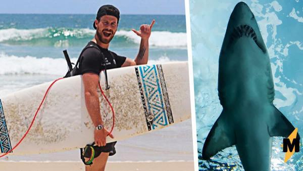 Путешественник решил поплавать с акулами, и чуть не лишился конечности. Но не зубастых ему стоило бояться