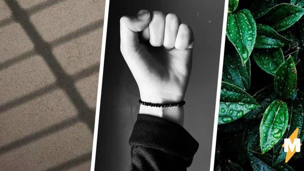 Вора поймали за руку, и он оказался в тюрьме, а люди на его стороне. Ведь тот с рождения преступник и обезьяна