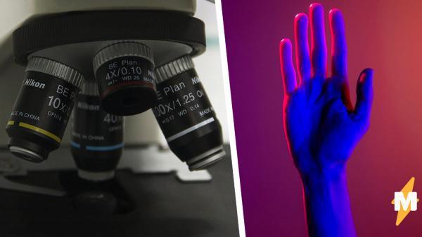 Парень показал, как потеет палец под микроскопом, и напугал людей. После такого они не готовы касаться других