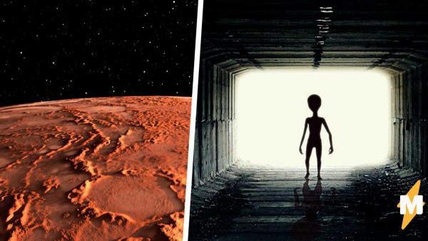 Наконец-то мы узнали, как выглядят пришельцы. Уфолог нашёл на фото с Марса их следы - почему-то кошачьи