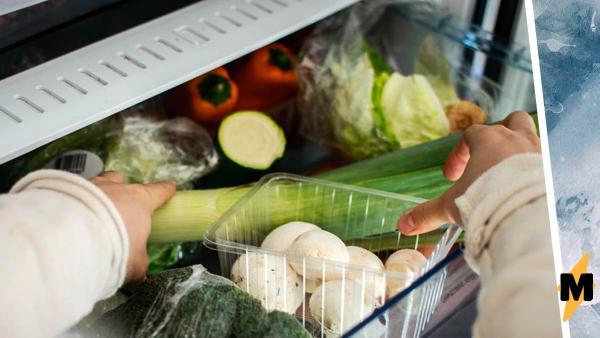 Женщина искала применение контейнеру в холодильнике, но люди положили конец её мучениям. Ответ доказал