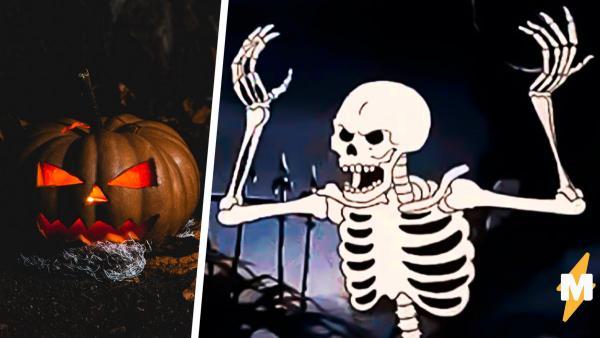 Герои мемов стали скелетами, и это дань Хеллоуину. Ди Каприо и кот за столом криповые, но не менее годные