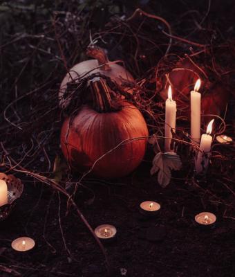 Девушка решила сделать тыкву на Хеллоуин, но она проклята. Людям очень нравится, однако они советуют её сжечь