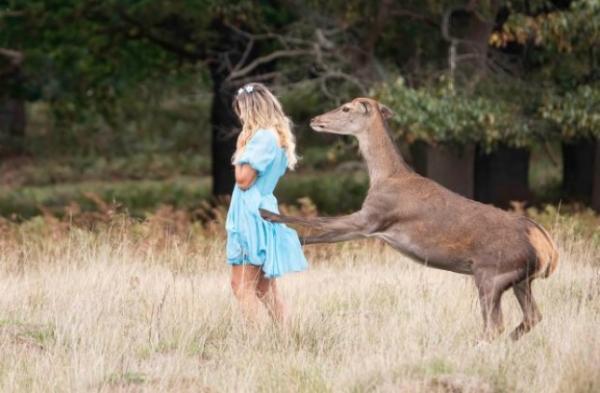 Певица снимала промо для своей новой песни, но подверглась нападению. Пение впечатляет только оленей из Disney