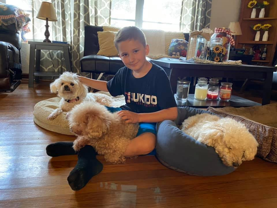 Мальчик объяснил, почему нужно брать пожилых псов из приюта, и тронул людей. Его ответ был вовсе не о щенках
