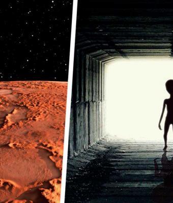 Наконец-то мы узнали, как выглядят пришельцы. Уфолог нашёл на фото с Марса их следы — почему-то кошачьи