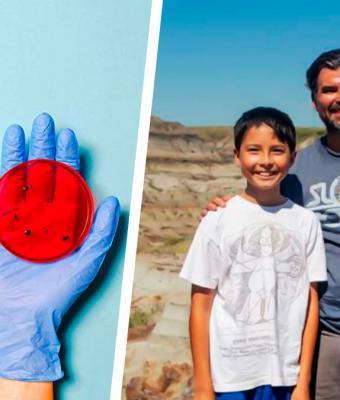 Школьник пошёл гулять и сделал открытие, удивившее учёных. Благодаря ему они узнали много нового об эволюции