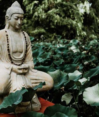 Буддийский монах рассказал, по какому распорядку дня живут в храме. Спойлер: армия покажется детским садом