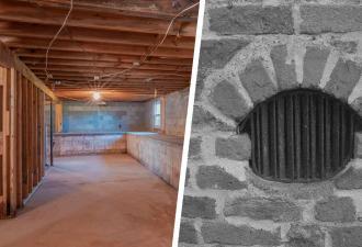 Хозяин спустился в подвал дома и понял: он тут не первый жилец. Прежний владелец не съезжает уже миллионы лет