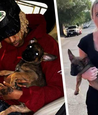Девушка бросила в парня щенка из-за его цвета кожи. То, что он сделал в ответ, заставляет людей восхищаться им