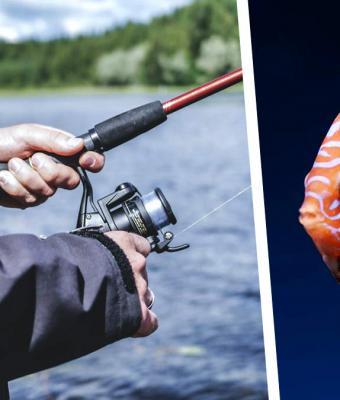 Мужчина ловил рыбу к ужину, но один взгляд на улов заставил его бежать. Существо выглядело в точности как он