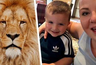 Мама увидела сына в клетке у льва и чуть не заработала инфаркт. Но ей надо быть внимательнее — иллюзии повсюду