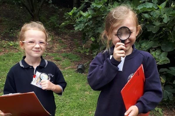 Дети помогли учёным сделать открытие, но рано радовались. Найденного жука сделал неузнаваемым редкий вирус