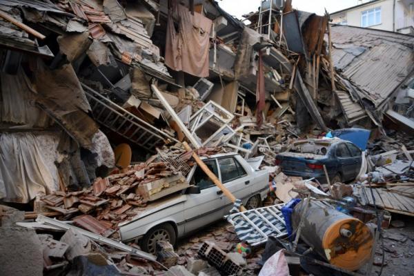 Семья потеряла в землетрясении кота и оплакивала его. Но горевать не стоило - под обломками людей ждал сюрприз