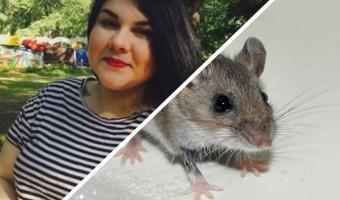 Девушка спасла мышь из клеевой ловушки, но нарвалась на хейт. Питомец милый, но люди верят: он настоящее зло