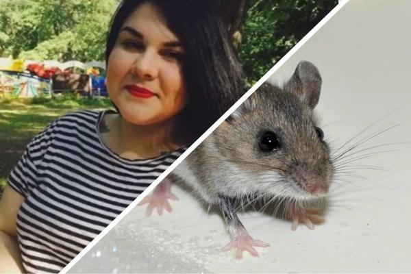 Девушка показала, как спасла мышонка из ловушки, но люди не оценили подвиг. Ведь для многих грызун - это беда