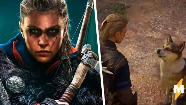 Assassin's Creed: Valhalla вышла, и геймеры уже гладят там собак. А вот местные коты - не для слабонервных