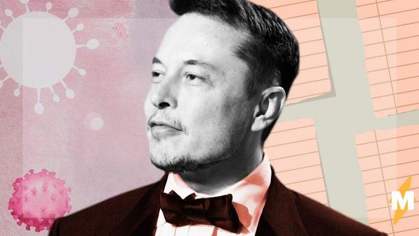 Илон Маск «завалил» тест на COVID-19и стал мемом. А надо было внимательнее читать инструкции