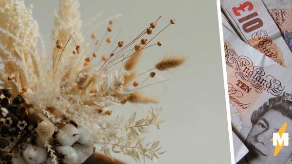 Аукционеры готовы купить сухой цветок за сотни долларов. Растение обычное, в отличие от его вековой тайны