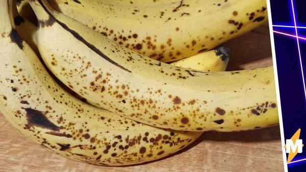 Парень увидел бананы под ультрафиолетом и потерял смысл жизни и аппетит. Он узнал, кто живёт на каждом фрукте